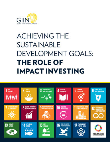 Achieving the Sustainable Development Goals: The Role of Impact