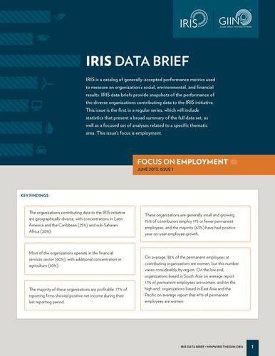 IRIS Data Brief: Focus on Employment | The GIIN